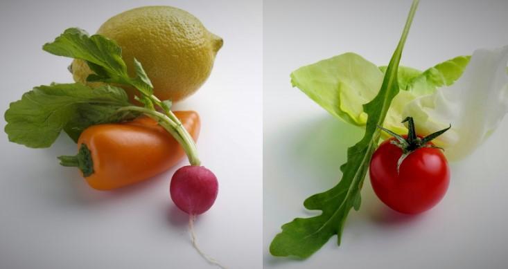 Alimentos globales y sostenibles