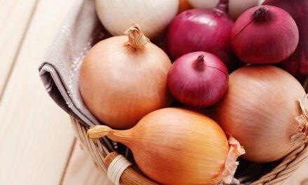 Las cebollas, alimentos con gran riqueza nutricional y funcional