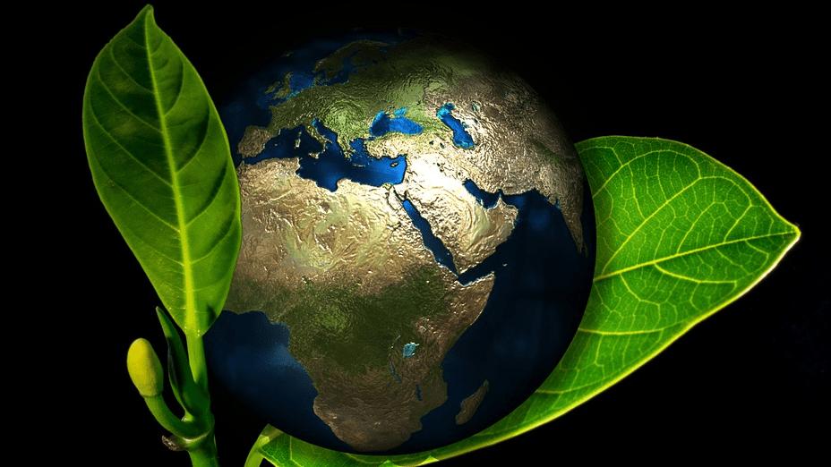El proyecto Ecofood2023 invierte en la innovación en la cadena de valor