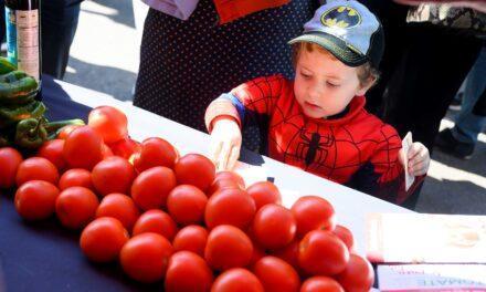 Almería celebra la Semana del Tomate