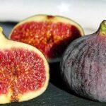 El higo, la «fruta de los filósofos»