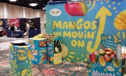 """El mango """"conquista y enamora"""" al sector minorista de Estados Unidos"""