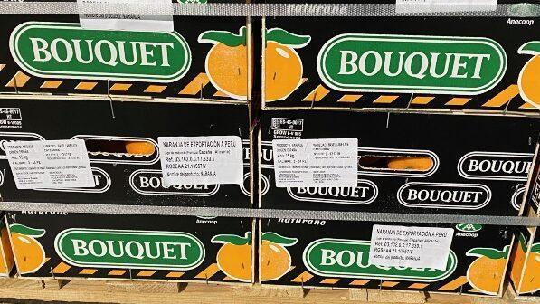Anecoop abre via comercial con Perú al enviar naranjas desde España