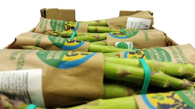 Alcampo retoma la comercialización de espárrago verde nacional de temporada y de Producción Controlada
