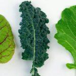 Las dietas con más vegetal también mejoran los estados de ánimo