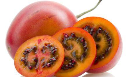 El tamarillo, o tomate de árbol, ha conquistado el gusto de diferentes culturas