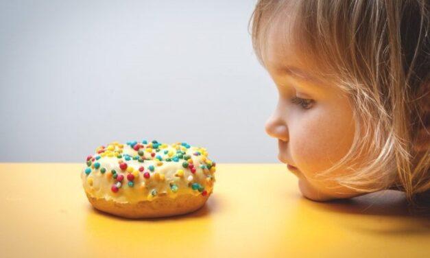 Un microorganismo aislado del intestino de personas delgadas puede prevenir la obesidad