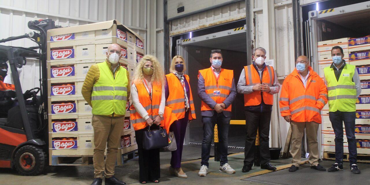 Valencia envía 11 contenedores de naranjas a la India con tratamiento de frío