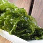Las algas, un tesoro ecológico y nutricional