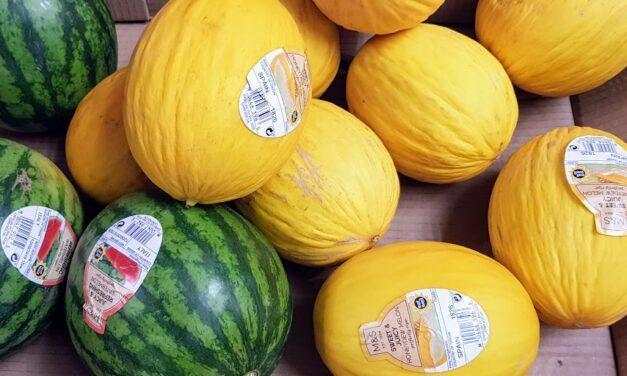 Cotizaciones de melones y sandías a principios de verano