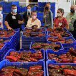 Los productores de pimiento en Murcia promocionan el consumo junto a la hostelería