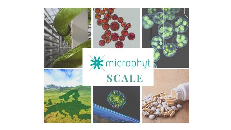 SCALE, the world's first fully-integrated microalgae biorefinery