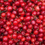 El CONSORCIO VOG diversifica su gama con cerezas de calidad
