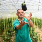 Verduras ecológicas de temporada con huella social