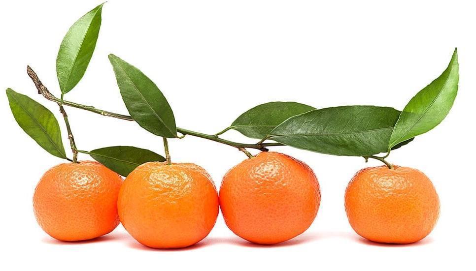 Mandarinas australes