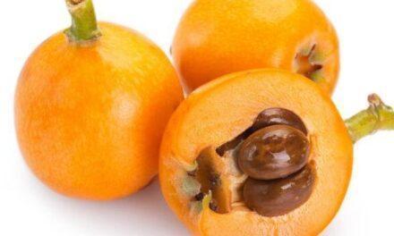 El níspero, vitaminas y nutracéuticos con sabor