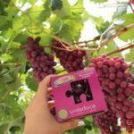 Uvasdoce propone novedades en Fruit Attraction 2021